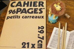 Cahier A4 petits carreaux - lot 4 cahiers