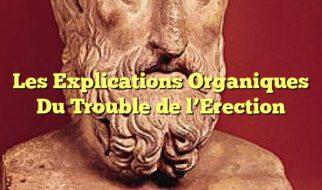Les Explications Organiques Du Trouble de l'Erection